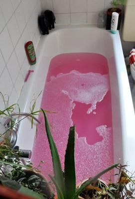 Nimm ein Bad